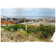Coastal Art Poster
