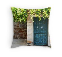 Blue Door, Yellow Flowers Throw Pillow