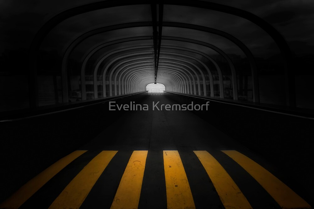 Lost In The Shadows, I Walk Alone by Evelina Kremsdorf