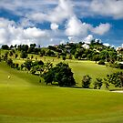 18th Green Cedar Valley country club, Antigua B.V.I. by iamwiley