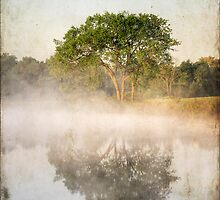 Early Morning Reflections by Darren Fisher