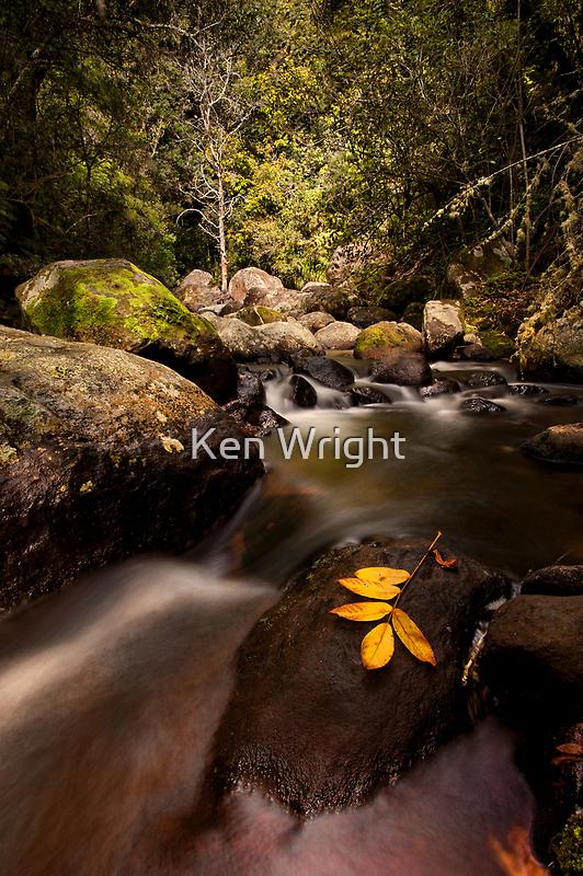 Kaiate Autumn Gold by Ken Wright