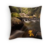 Kaiate Autumn Gold Throw Pillow