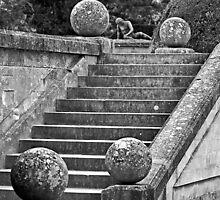 Blenheim Steps by Yampimon