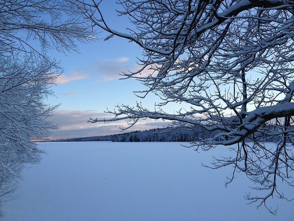 Lake Pleasant, Casco, Maine After Snowstorm by Carl Libby