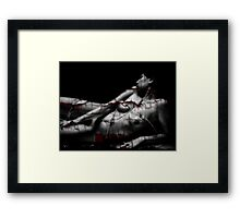 Fractured Nude Framed Print