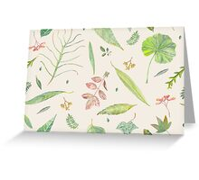 Leaf study watercolor Greeting Card