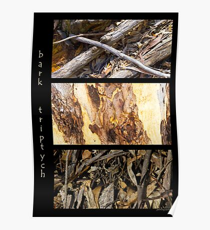 Bark Triptych Poster