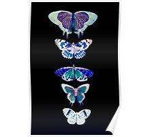 Butterfly Line Black Poster