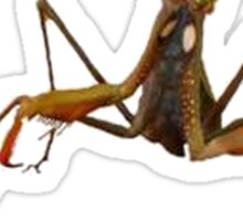 Praying Mantis with Dead Gorgeous Text Sticker