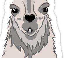 House Llama Sticker