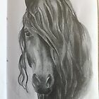 Friesian by Judith Selcuk