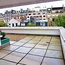 Maison La Roche, Roof Top Jardin, Paris 2012 by cschurch