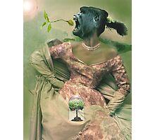 Gorilla . Photographic Print