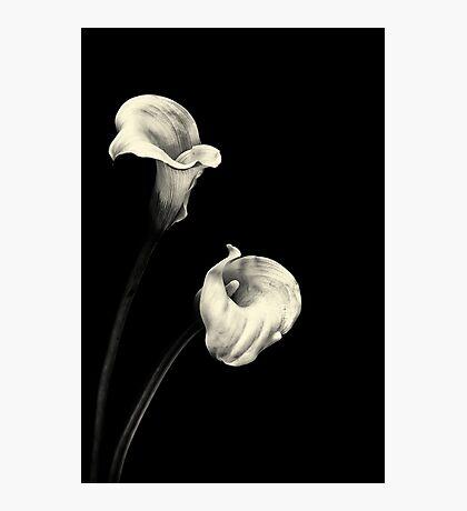 Sweet Serenity... III Photographic Print