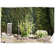 Sidewalk Garden Poster