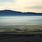 Misty Morning by photoshot44