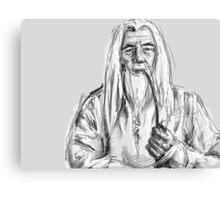 Gandalf Canvas Print