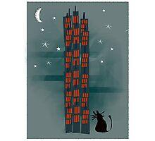 Animal's Nightlife - Urban Cat Photographic Print
