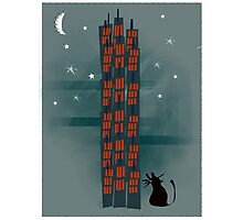 Animal's Nightlife - Urban Cat Photographic Print