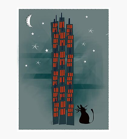 Urban Cat Photographic Print