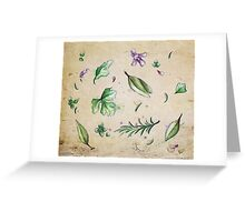 Parsley, Sage, Rosemary and Thyme Greeting Card