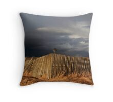 Incoming Spring Storm Throw Pillow