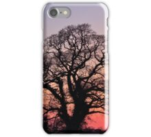 Sunset (Little and Large) iPhone Case/Skin