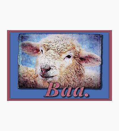 """Baa."" (with background) Photographic Print"
