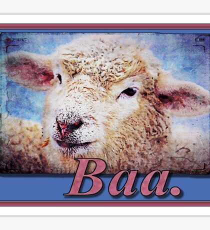 """Baa."" (with background) Sticker"