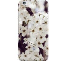 Coffee & Cream iPhone Case/Skin