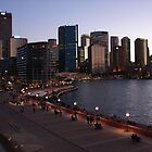 Sydney Harbor by Ali Choudhry
