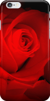 RED ROSES by Colleen2012