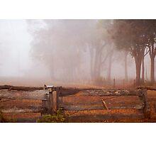 Frankland Fog Photographic Print