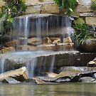 Garden Falls by Robin Black
