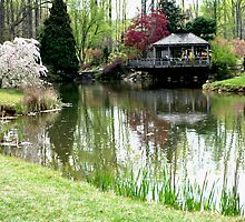 Brookside Gardens by Robin Lee