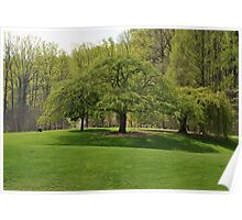 Weeping Willow at the Gardens Poster