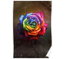 Rainbow Dream Rose Poster