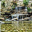 Garden Waterfall by Robin Lee