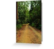 forrest drive  Greeting Card