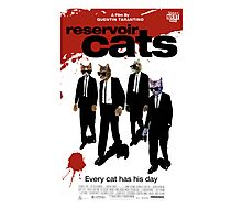 Reservoir Dogs (Cats) Meow Photographic Print