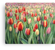 From The Nature's Palette Canvas Print