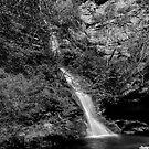 Minnehaha Falls - Katoomba NSW by Mark  Lucey