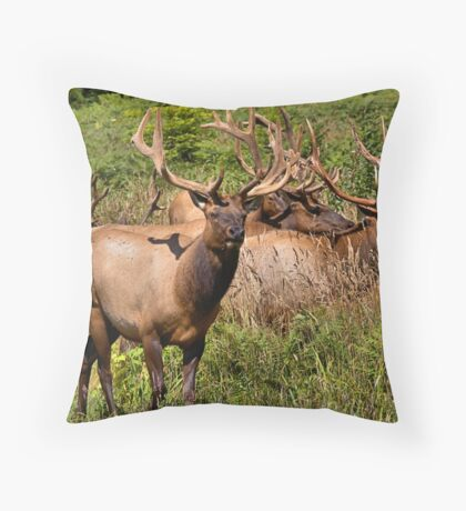 Annoyed Much Throw Pillow