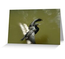 Ready for flight Greeting Card