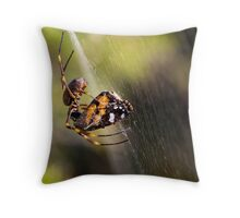27th April 2012 Throw Pillow
