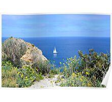 Springtime sailing Poster