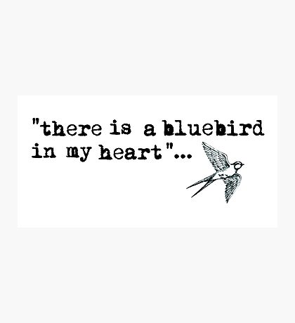Bluebird quote Photographic Print