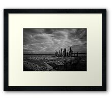 Woodhenge Framed Print
