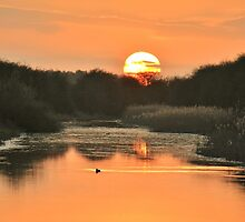 Dipping Sunset by John Dunbar